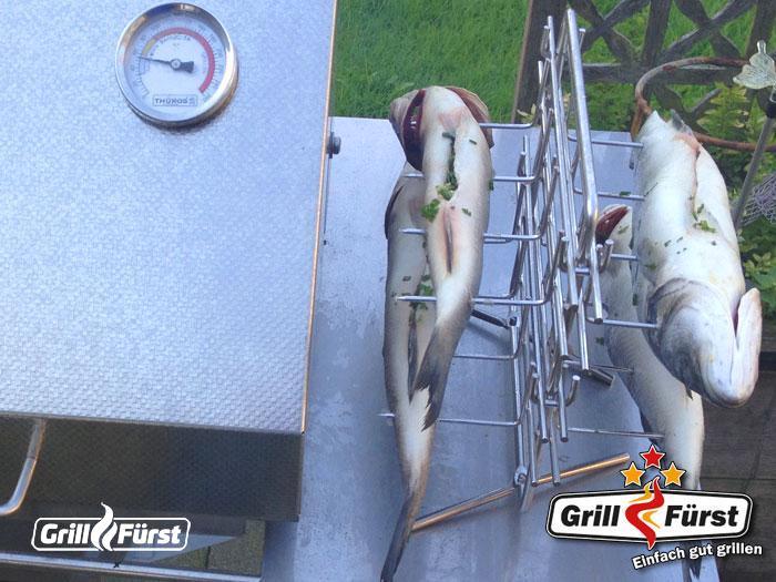 Fisch auf Multigriller
