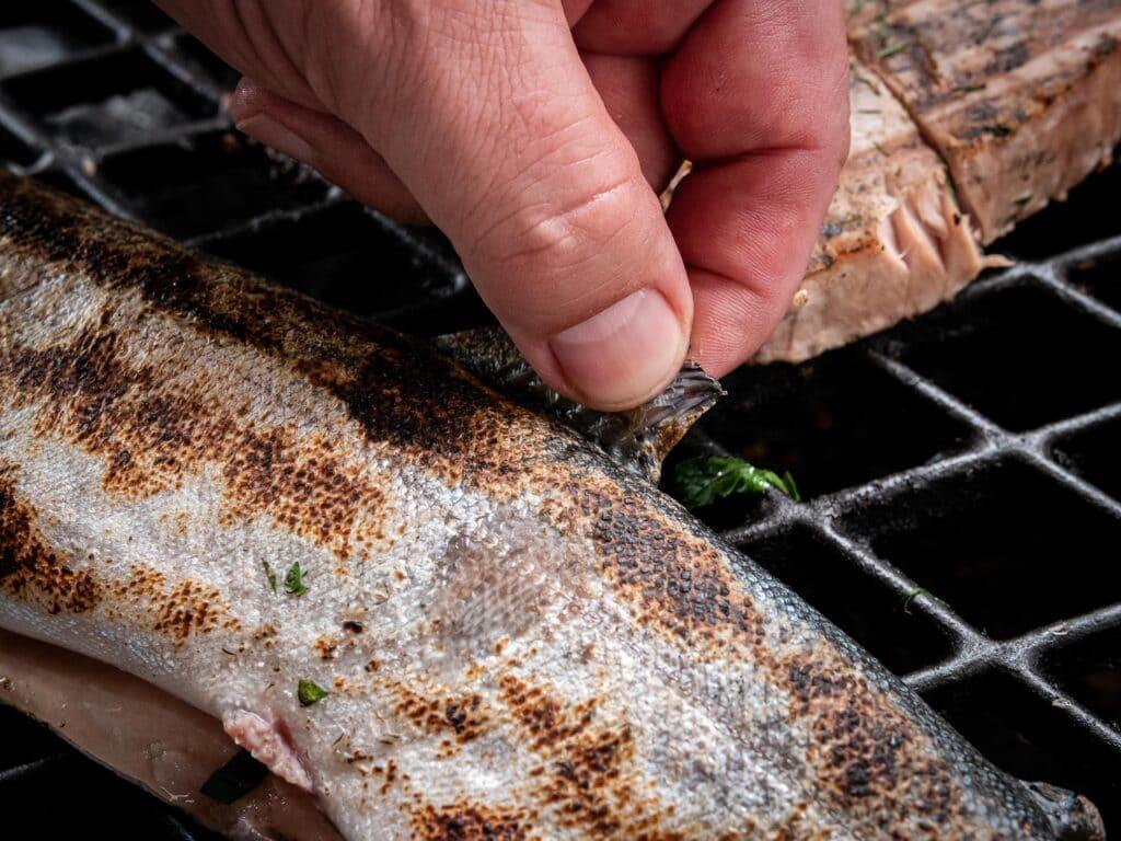 Flossenprobe beim Fisch grillen