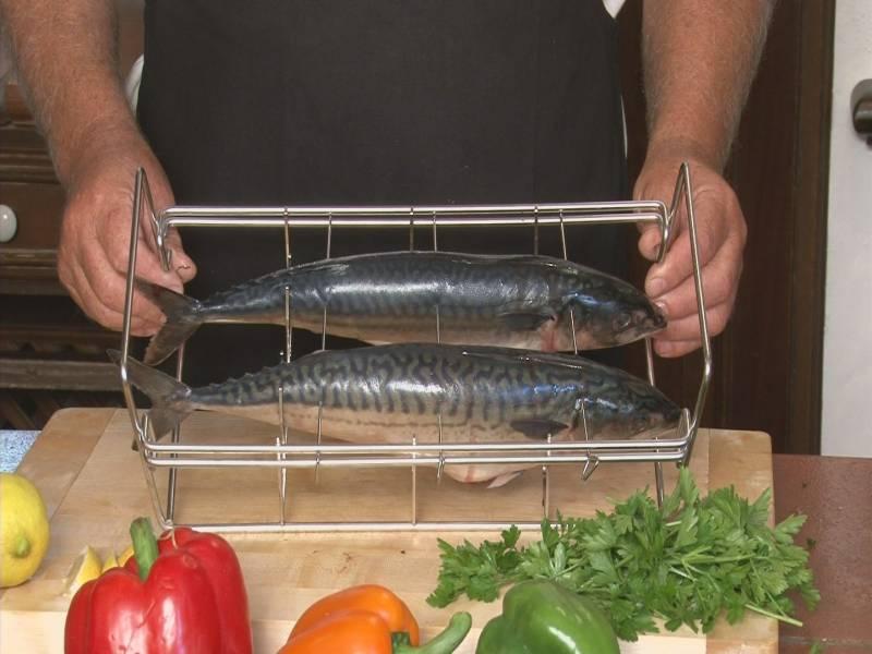 Gourmet Fischgriller S2 Star