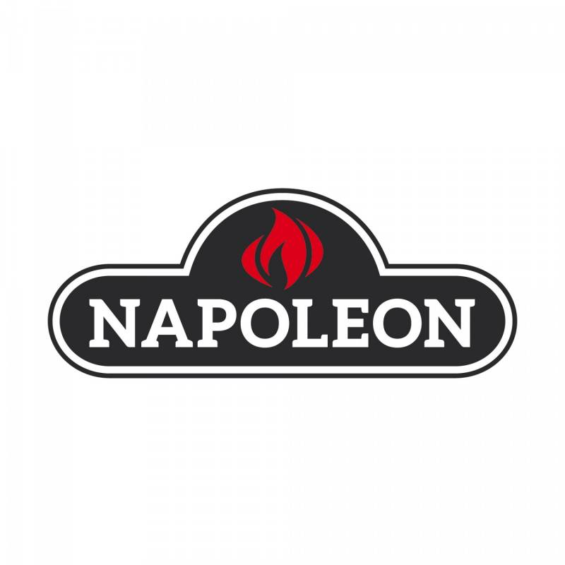 Napoleon Rogue R425SBPK Schwarz mit Seitenkocher - Modell 2018