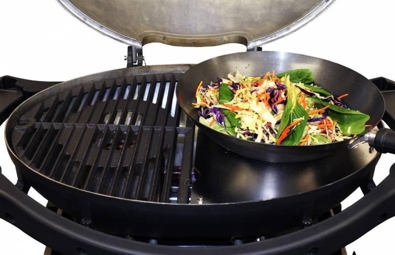 Camping Grill: Ziegler & Brown Twin Grill mit Grillplatte und Topfhalter