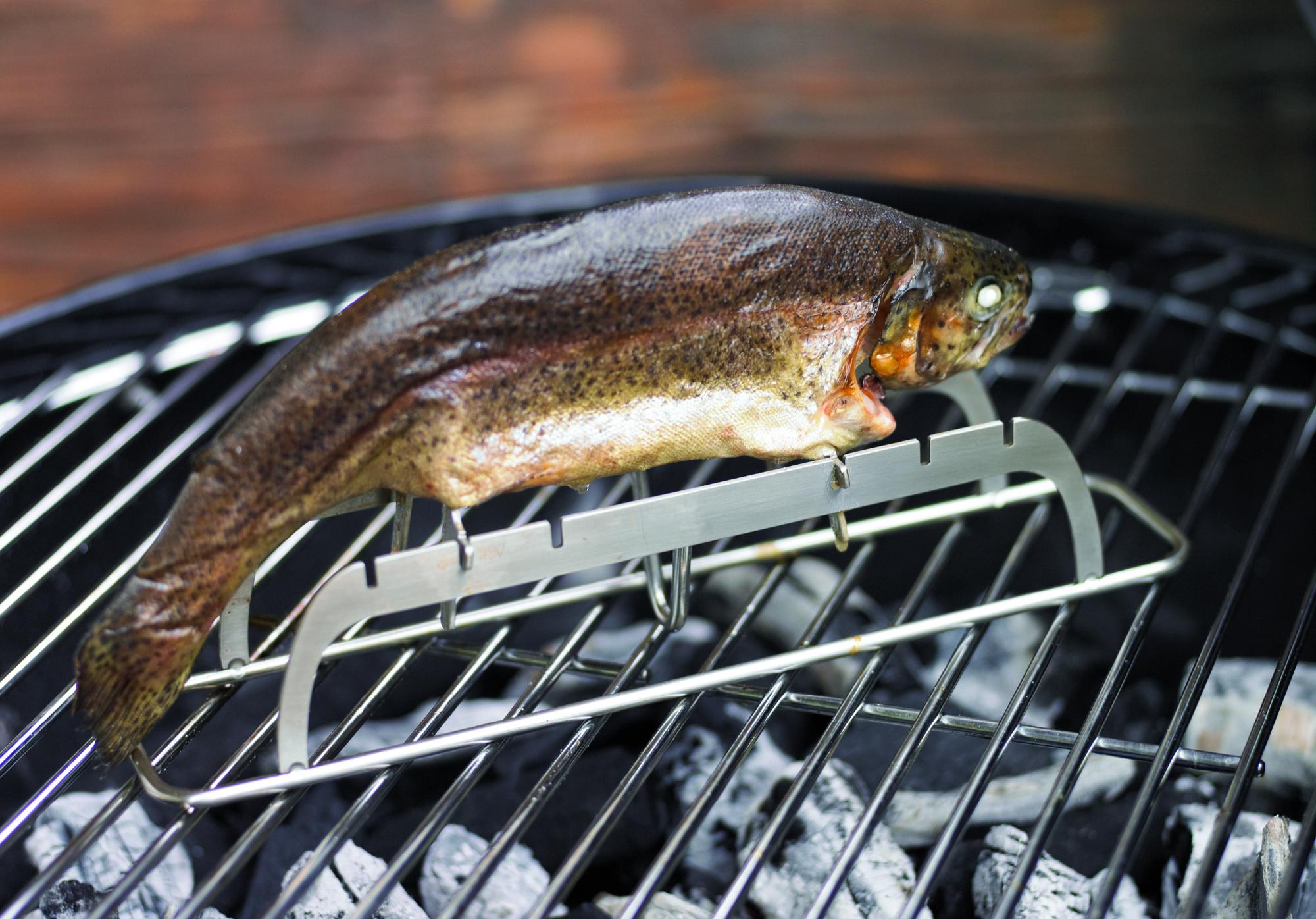 Weber Holzkohlegrill Fisch : Fisch vom grill fischhalter oder fischbräter für jeden grill