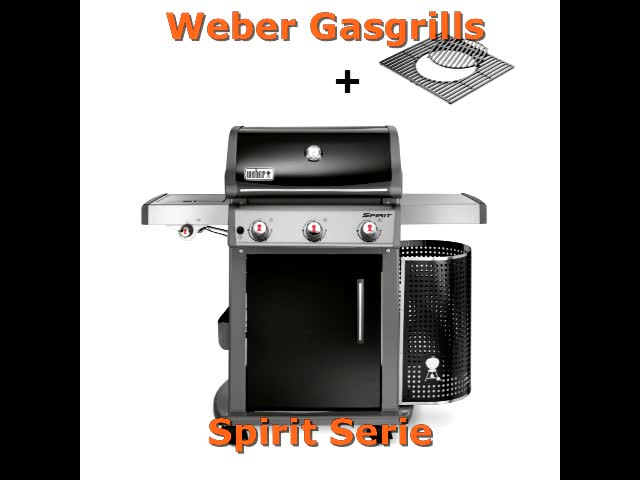 Weber Holzkohlegrill Alternative : Weber gasgrill shop